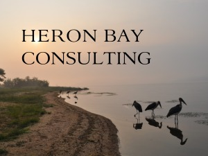 Heron Bay Consulting for link